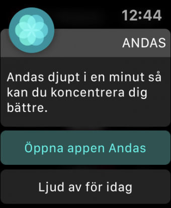 hälsa Watch OS Andas