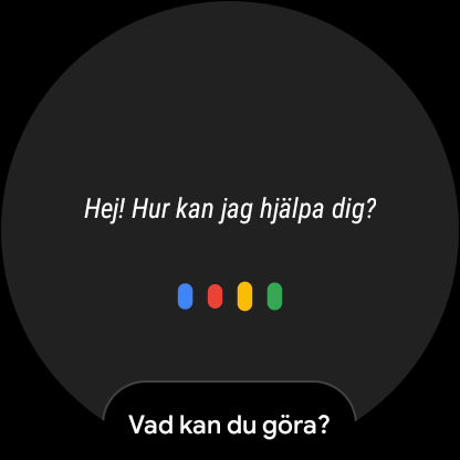 Google Assistant test